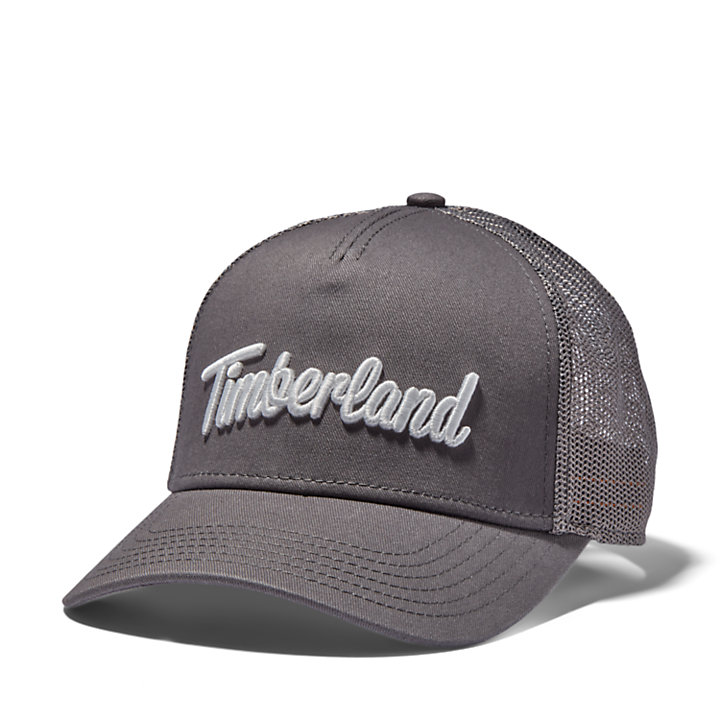 3D-logo Trucker Hat for Men in Grey-
