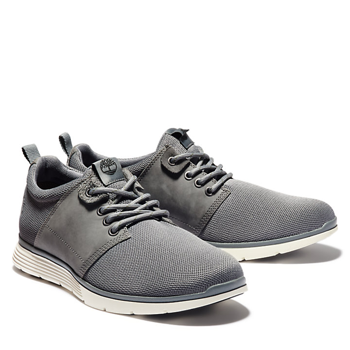 Killington Oxford for Men in Dark Grey-