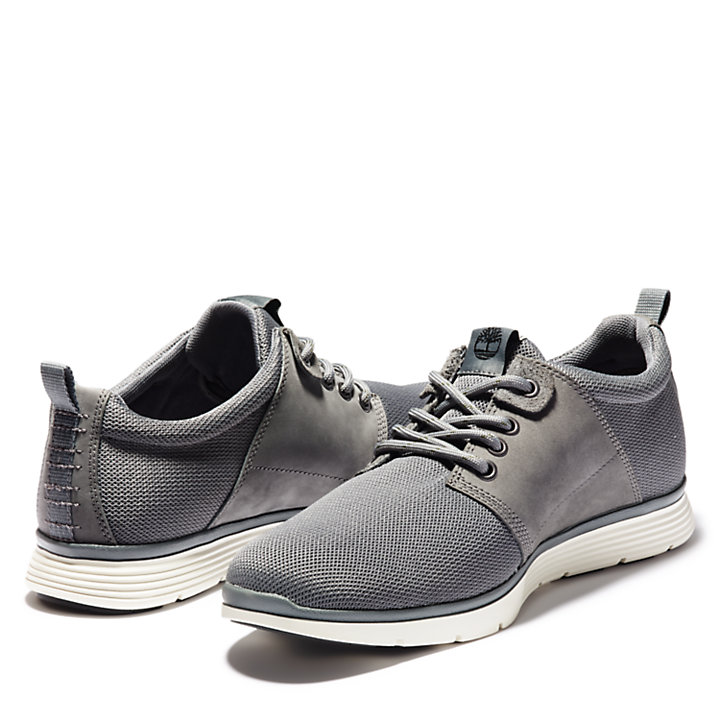 Oxford da Uomo Killington Grigio Scuro-
