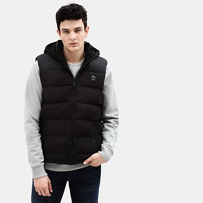 South+Twin+Bodywarmer+voor+Heren+in+zwart