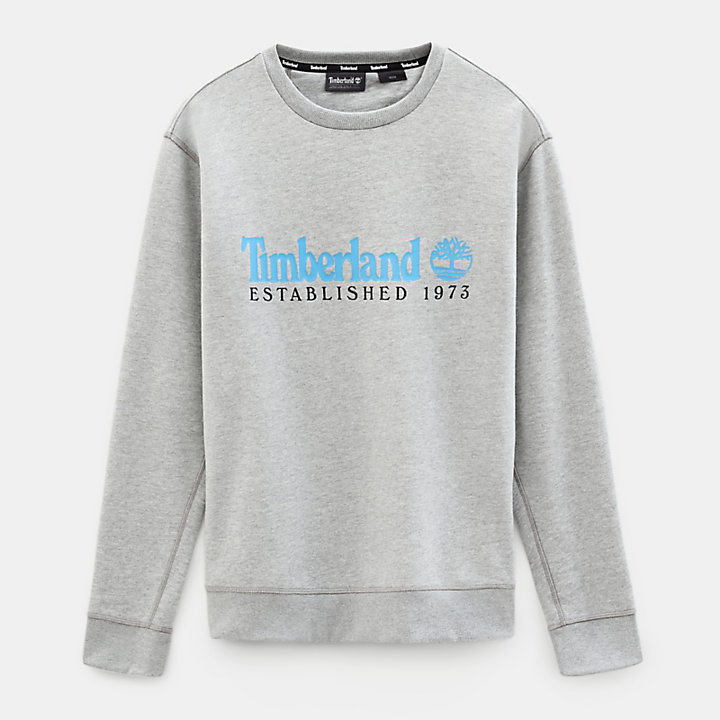 Essential Sweatshirt for Men in Grey-
