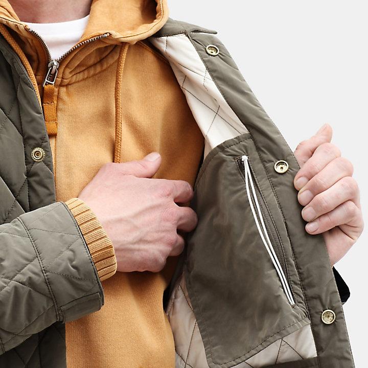 Mount Crawford gesteppte Hemdjacke für Herren in Grün-