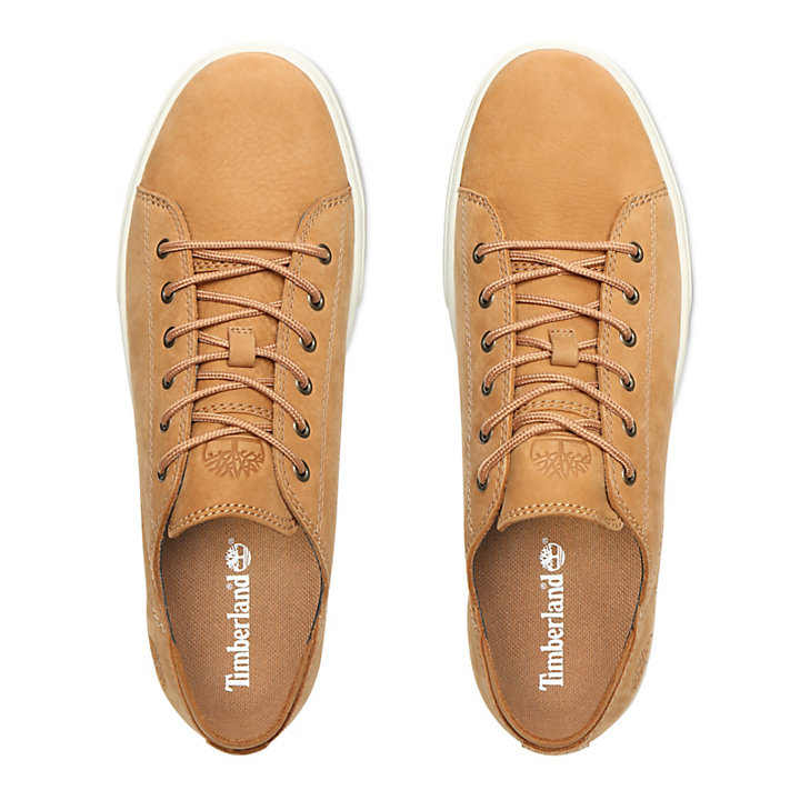 Oxford da Uomo Adventure 2.0 Cupsole in cuoio-