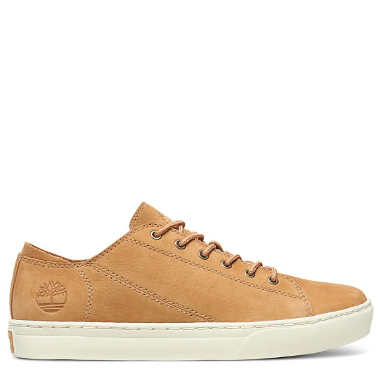Adventure 2.0 Cupsole Oxford for Men in Tan | Timberland