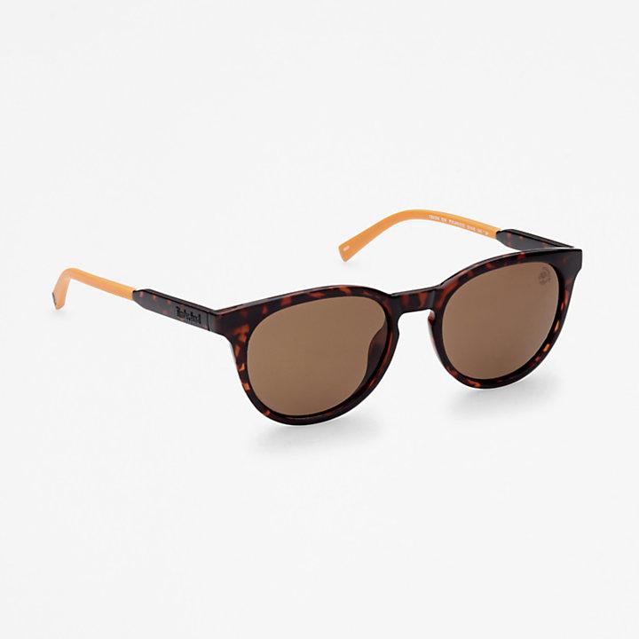 Timberland® Marcolin runde Sonnenbrille in Braun-