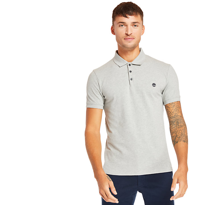 Merrymeeting River Polo Shirt for Men in Grey-
