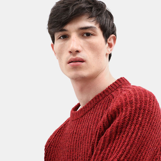 Maglione da Uomo in Lana di Agnello Phillips Brook in bordeaux | Timberland