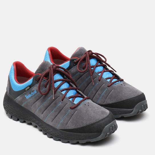 Chaussure de randonnée Parker Ridge GORE TEX® pour homme en gris