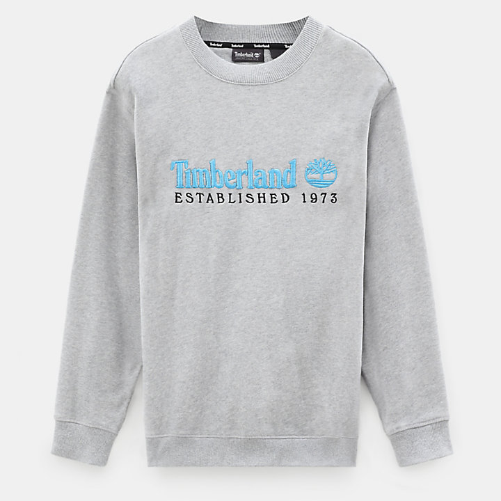 Archive Crew Sweatshirt für Herren in Hellgrau-