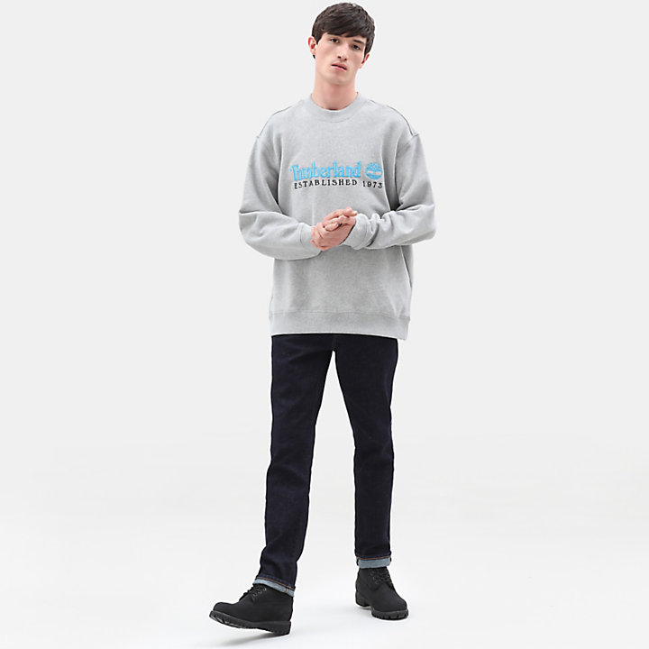 Archive Crew Sweatshirt for Men in Light Grey-