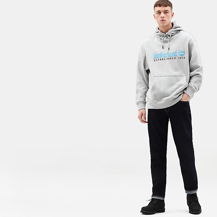 Hoodie for Men in Grey-