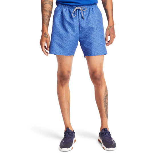 Sunapee Lake Print Swim Shorts for Men in Blue | Timberland
