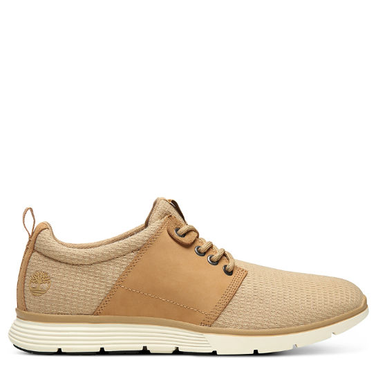 Killington Oxford for Men in Beige | Timberland
