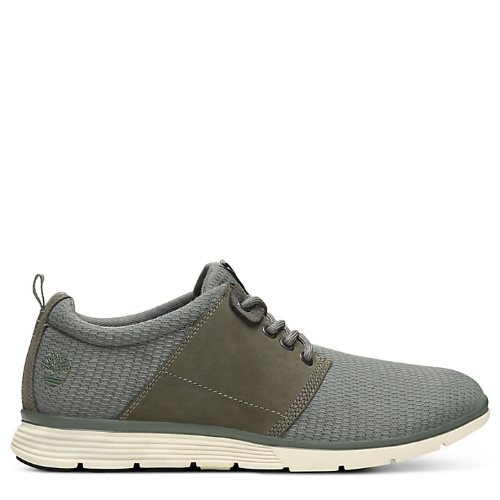Oxford Killington pour homme en gris-
