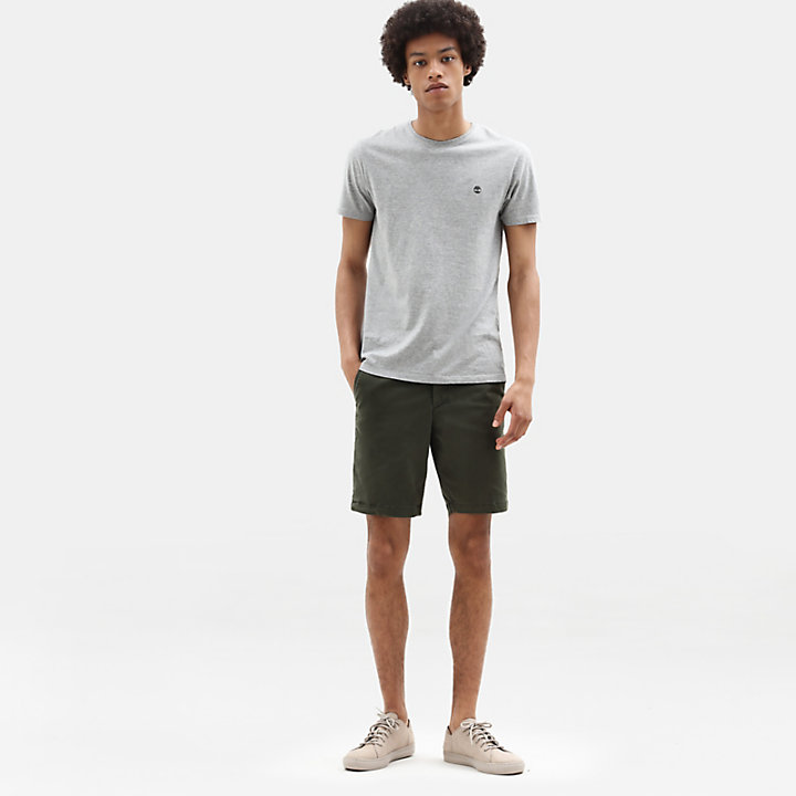 Squam Lake Chino Short voor Heren in groen-