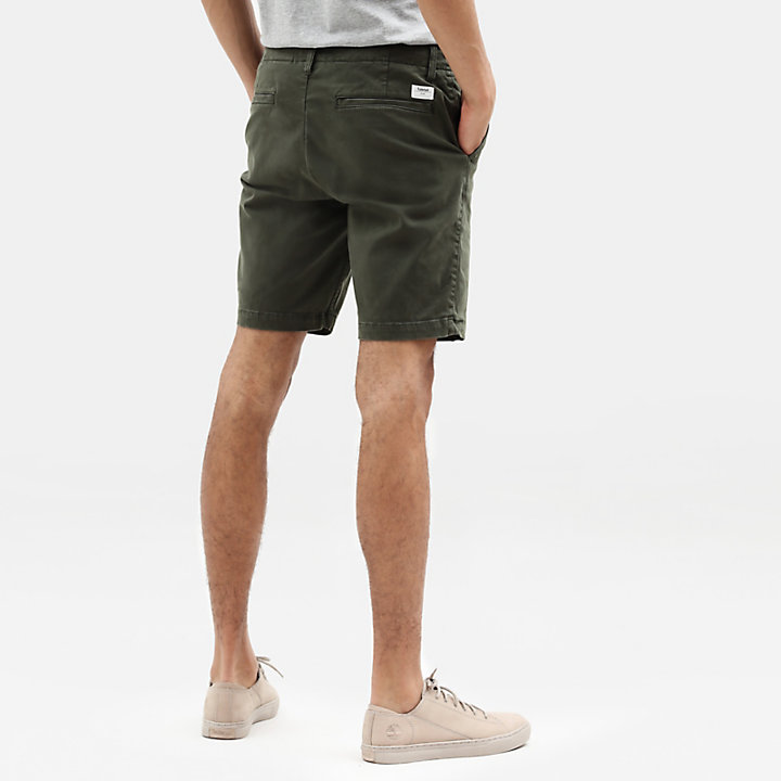 Squam Lake Chino Shorts for Men in Green-