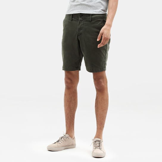 Shorts Chino da Uomo Squam Lake in verde | Timberland