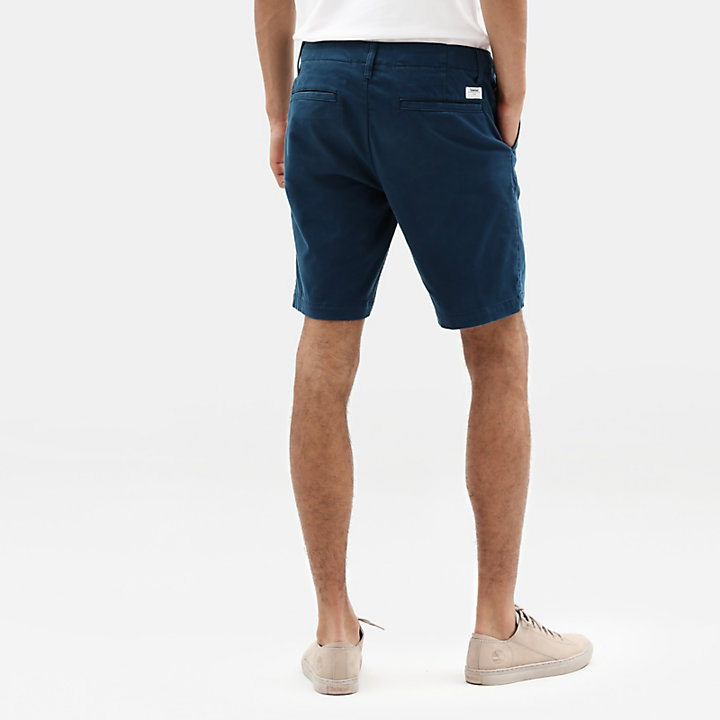 Squam Lake Chino Short voor Heren in groenblauw-
