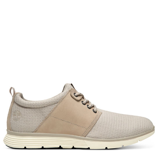 Killington Oxford for Men in Taupe | Timberland