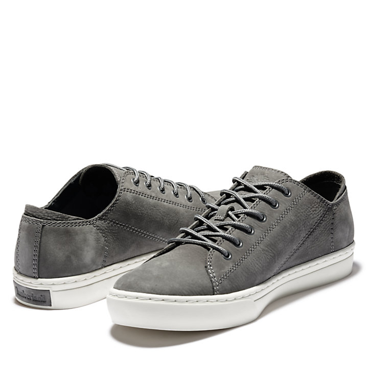 Adventure 2.0 Cupsole Oxford for Men in Grey-