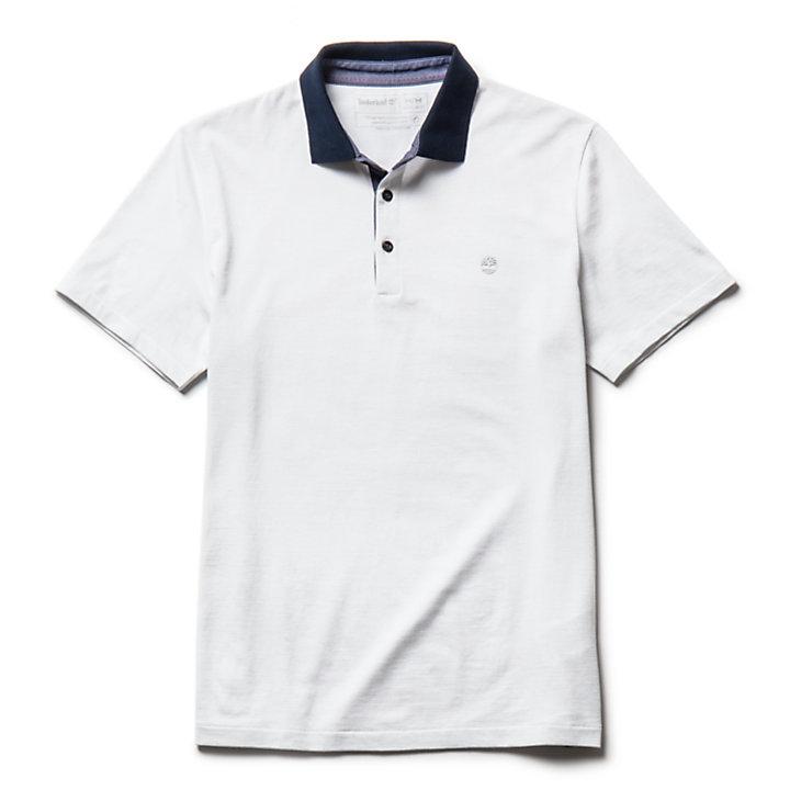 Polo en jersey Zealand River pour homme en gris clair-