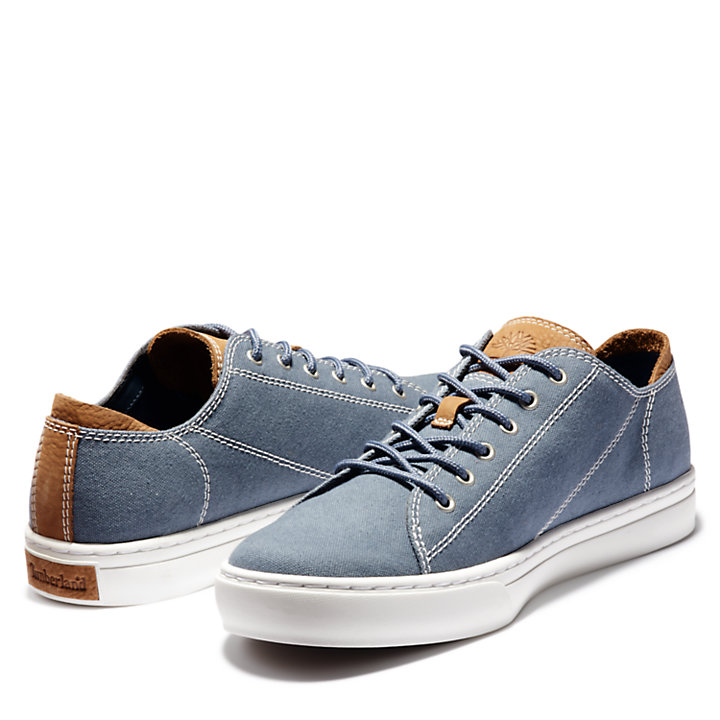 Adventure 2.0 Cupsole Canvas Oxford for Men in Blue-