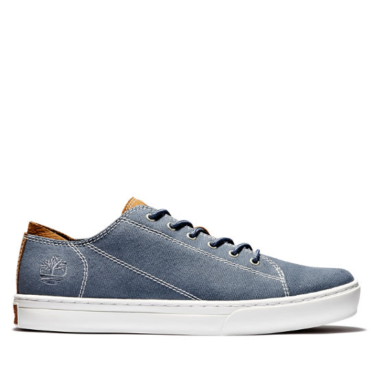 Adventure 2.0 Cupsole Canvas Oxford for Men in Blue | Timberland