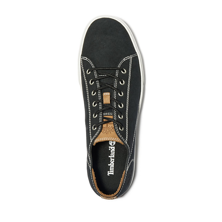 Adventure 2.0 Cupsole Canvas Oxford for Men in Black-