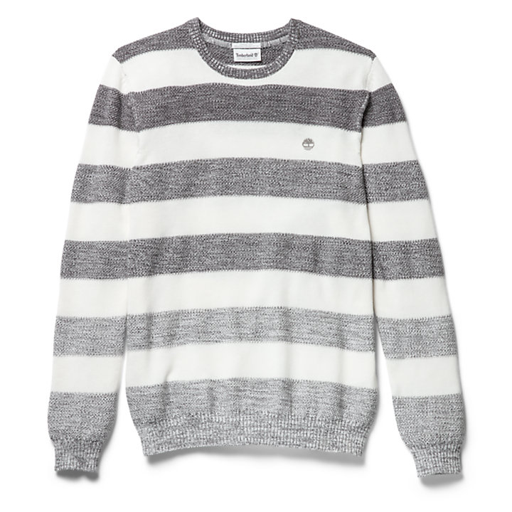 Pull coton biologique Beebe River homme en gris-