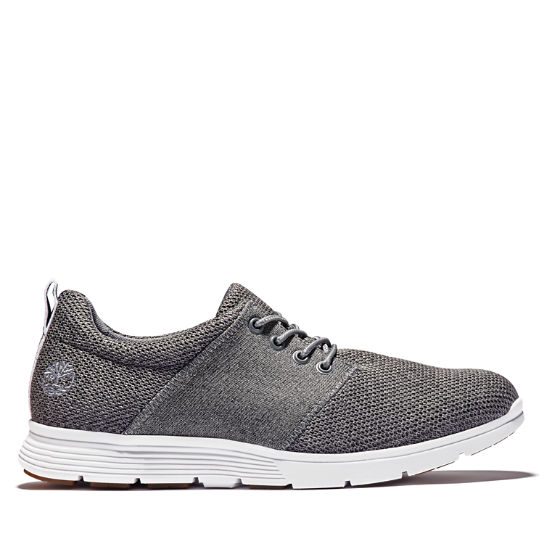 Oxford da Uomo Killington Knit in grigio | Timberland