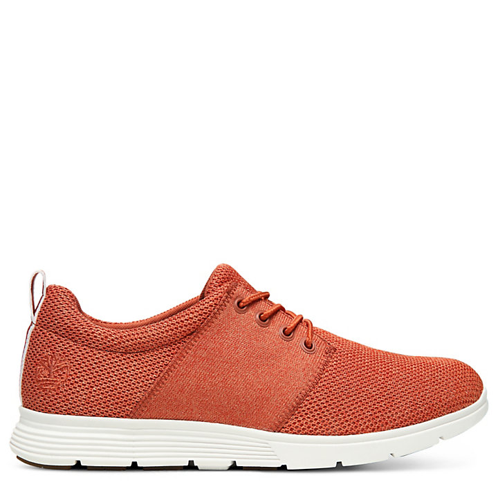 Oxford da Uomo Killington FlexiKnit Rossa-