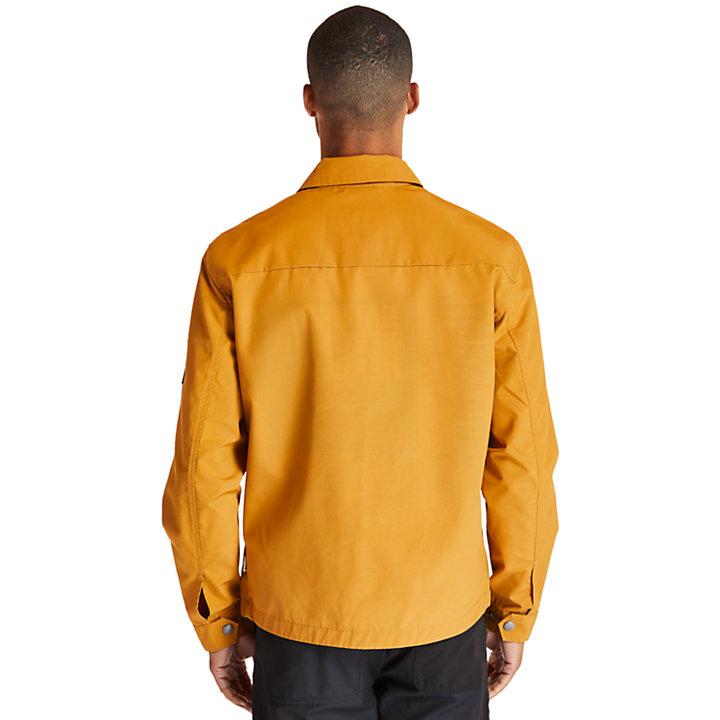 Kidder Mountain Jacke für Herren in Gelb-