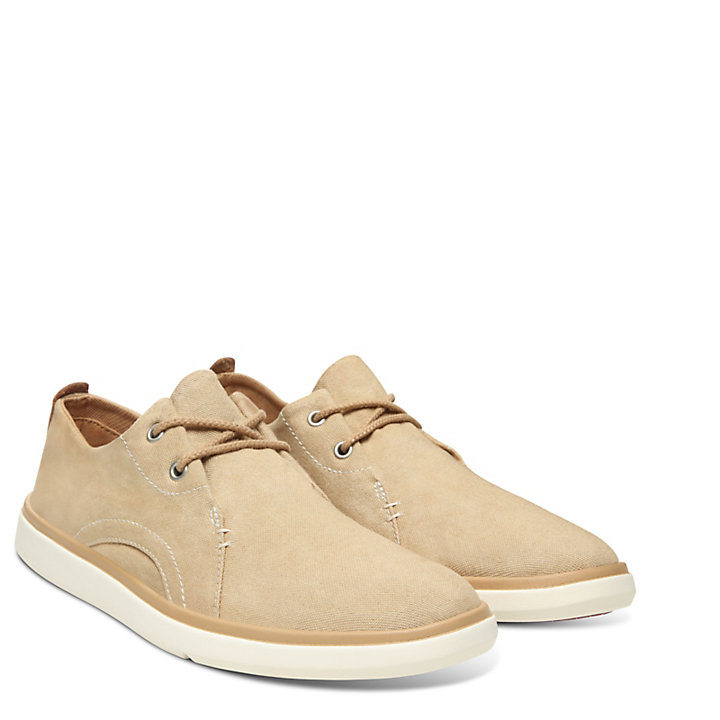 Gateway Pier Oxford for Men in Beige-