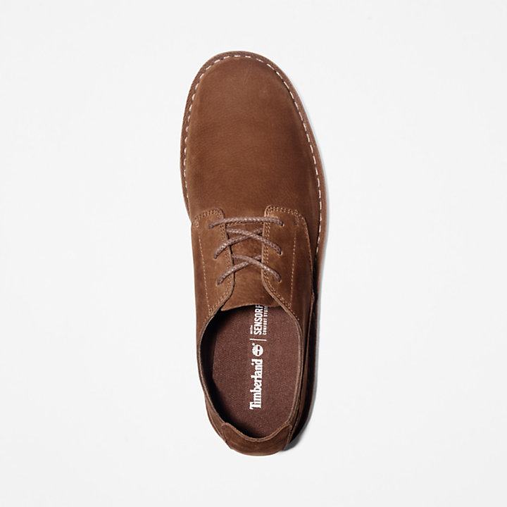 Oxford Tidelands pour homme en marron-