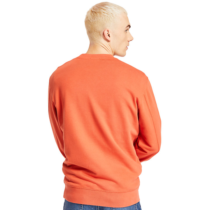 Exeter River Crew Sweatshirt for Men in Peach-