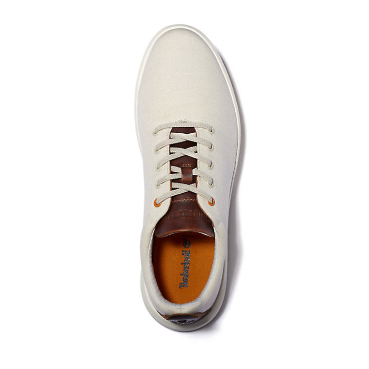 TrueCloud™ EK+ Canvas Sneaker for Men in White-