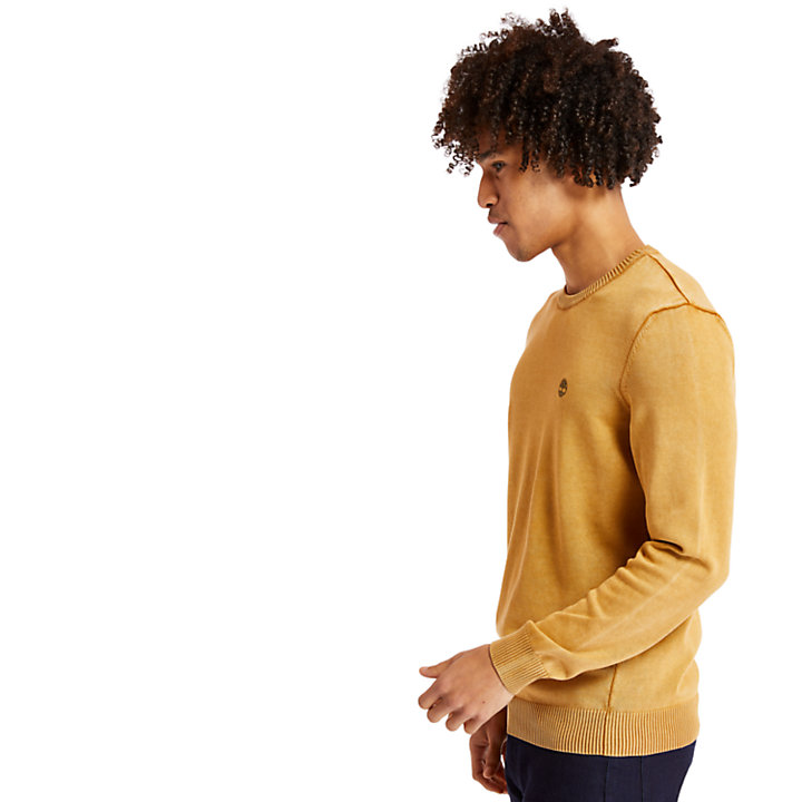 Pull en coton biologique pour homme en jaune-