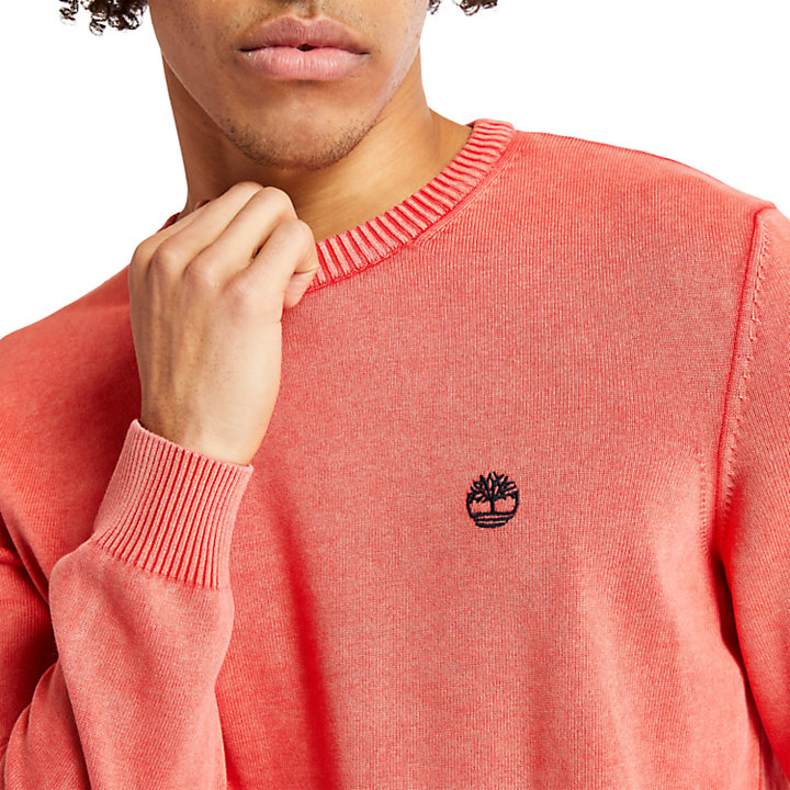 Organic Cotton Sweater for Men in Red-