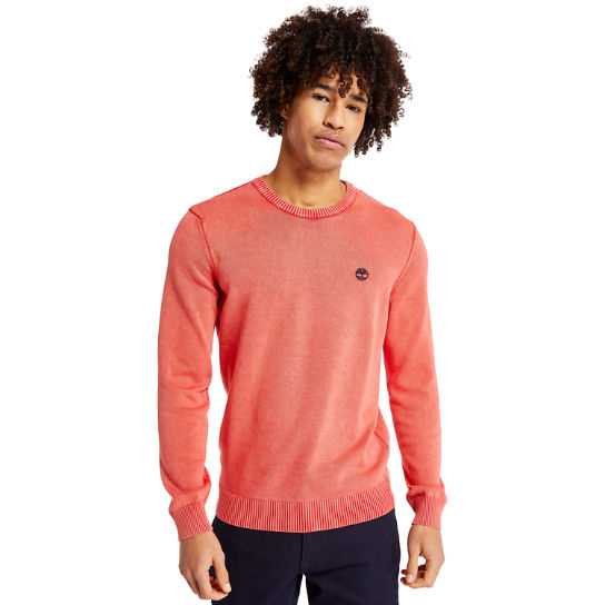 Organic Cotton Sweater for Men in Red | Timberland