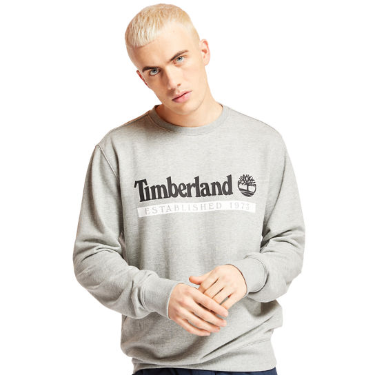 Established 1973 Sweatshirt for Men in Grey | Timberland
