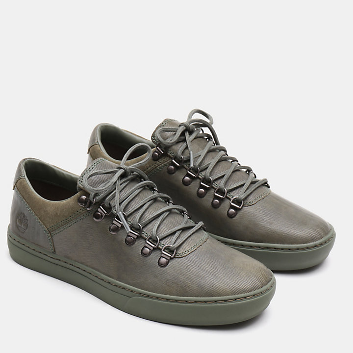 Adventure 2.0 Alpine Oxford voor heren in groen-