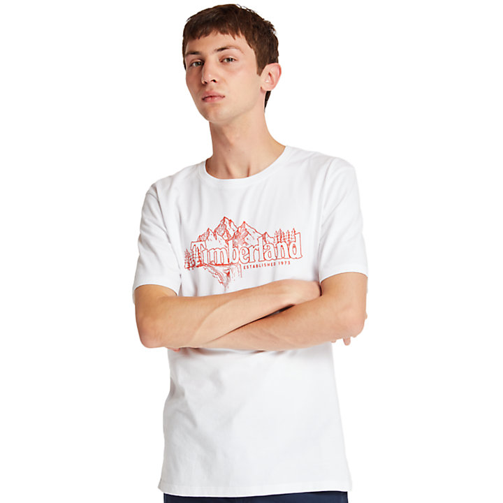 T-shirt da Uomo Linear Mountain in bianco-