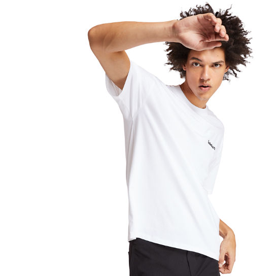 T-shirt Inspired Back Linear pour homme en blanc | Timberland
