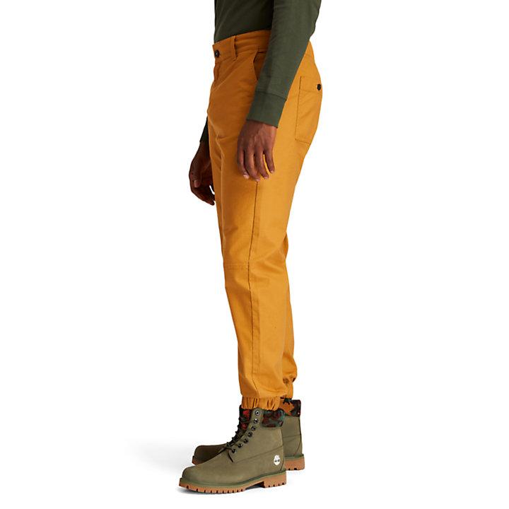 Pantalones de Escalada Antidesgarro para Hombre en amarillo-