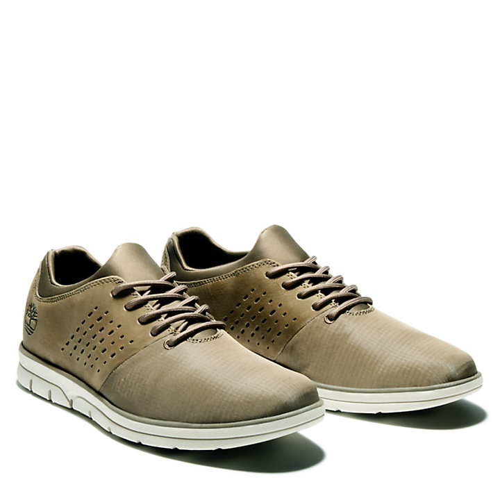 Bradstreet Sneaker for Men in Olive-