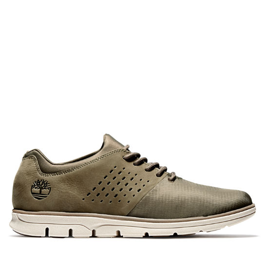 Bradstreet Sneaker for Men in Olive | Timberland