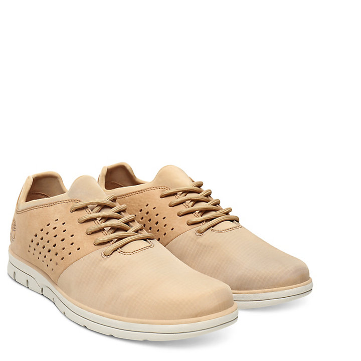 Bradstreet Sneaker voor Heren in Beige-