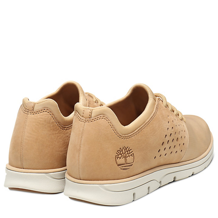 Bradstreet Sneaker for Men in Beige-