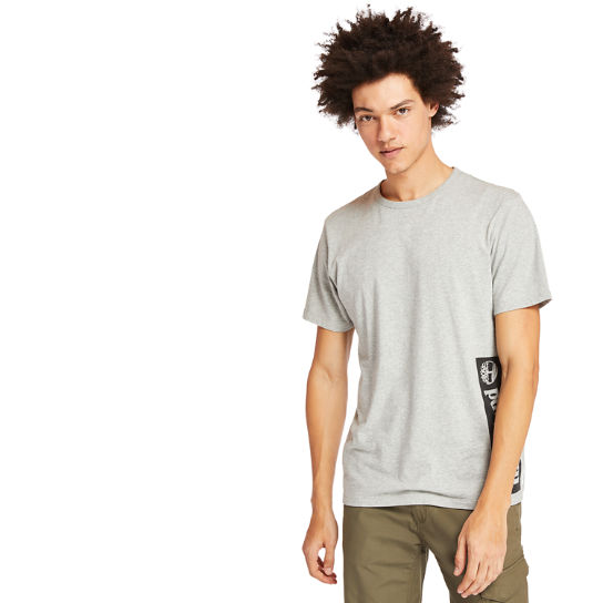 Established 1973 T-Shirt für Herren in Grau | Timberland