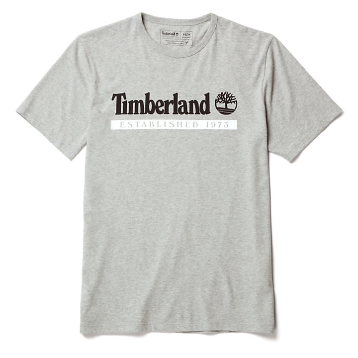 Timberland® 1973 T-Shirt for Men in Grey-